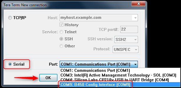 Figure 1  New Connection Page
