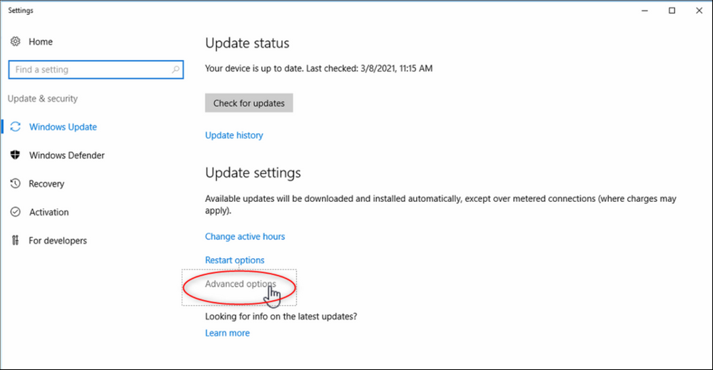 5 How to automatically update Windows Server 2016 for DICENTIS (online - with internet connection).png