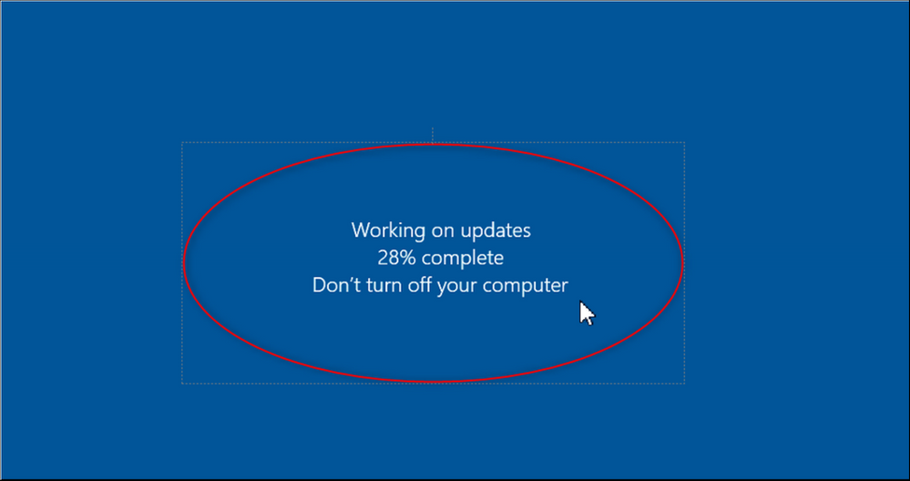 12 How to automatically update Windows Server 2016 for DICENTIS (online - with internet connection).png
